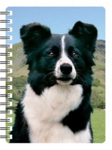 Border Collie 3D notebook black & white